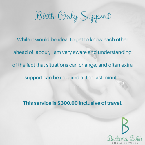 Birth Only Support - $300