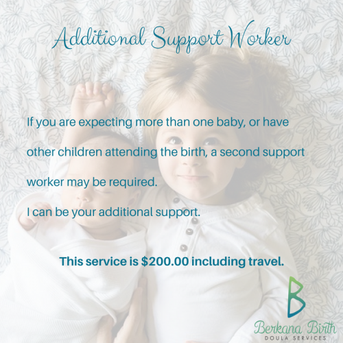 Additional Support Worker - $200